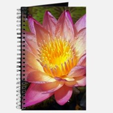 Lovely Pink Water Lily Journal