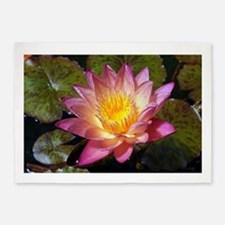 Lovely Pink Water Lily 5'x7'Area Rug