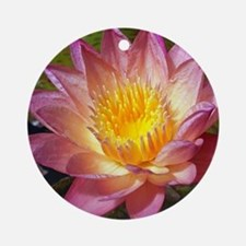 Lovely Pink Water Lily Round Ornament