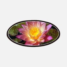 Lovely Pink Water Lily Patch
