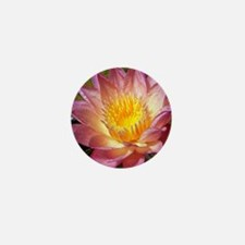 Lovely Pink Water Lily Mini Button