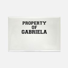 Property of GABRIELA Magnets