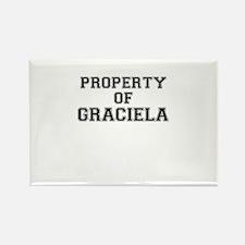 Property of GRACIELA Magnets