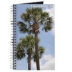 Palm Tree, Charleston SC Journal