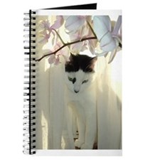 White and Black Cat Journal