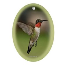 Ruby Throated Hummingbird Oval Ornament