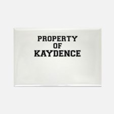 Property of KAYDENCE Magnets