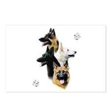 GSD Quad Postcards (Package of 8)