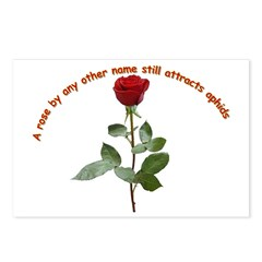 A rose by any other name Postcards (Package of 8)