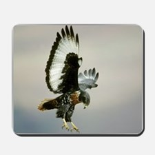 Bird of Prey Mousepad
