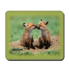 Fox Kits Mousepad
