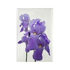 Purple Iris Photographic Art Rectangle Magnet