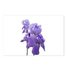 Purple Iris Photographic Art Postcards (Package of