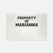 Property of MARIANNA Magnets