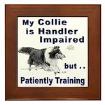 Collie Agility Framed Tile