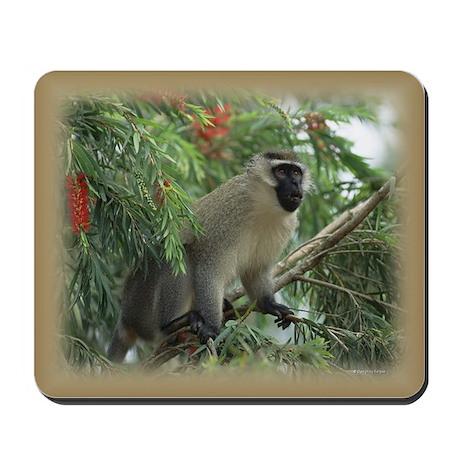 Vervet Monkey Mousepad
