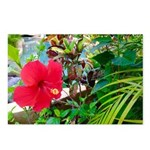 Mexican Flower Postcards (package Of 8)