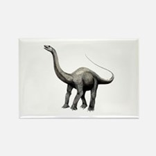 Apatosaurus Rectangle Magnet