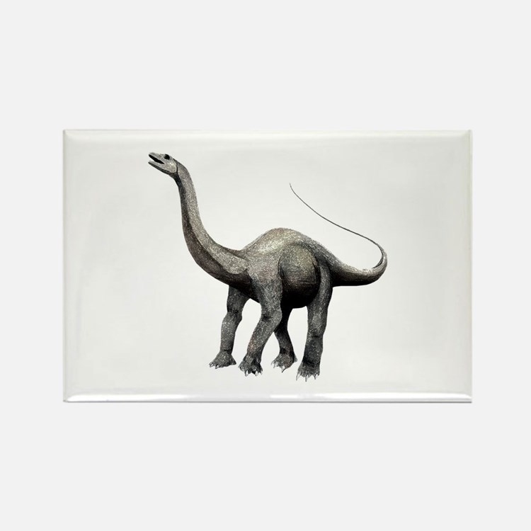 Apatosaurus Rectangle Magnet