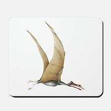 Quetzalcoatlus Mousepad