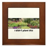 I didn't plant this Framed Tile