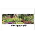 I didn't plant this Postcards (Package of 8)