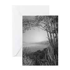 Hatch Pond - Mist B&W Greeting Card