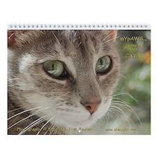 StacyJMT MyPaws Cat 2008 Wall Calendar