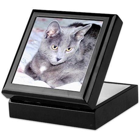 Gray Cat Keepsake Box