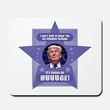 Trump Stimulus Package Mousepad