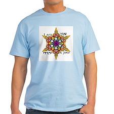 Ani Yehudi T-Shirt