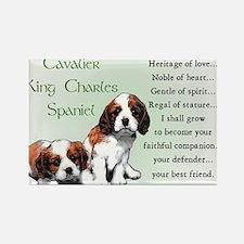 Cavalier King Charles Spaniel Magnets