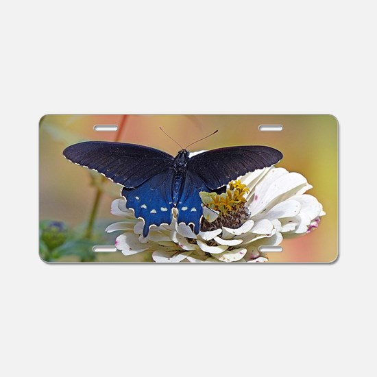 Spicebush Swallowtail Aluminum License Plate