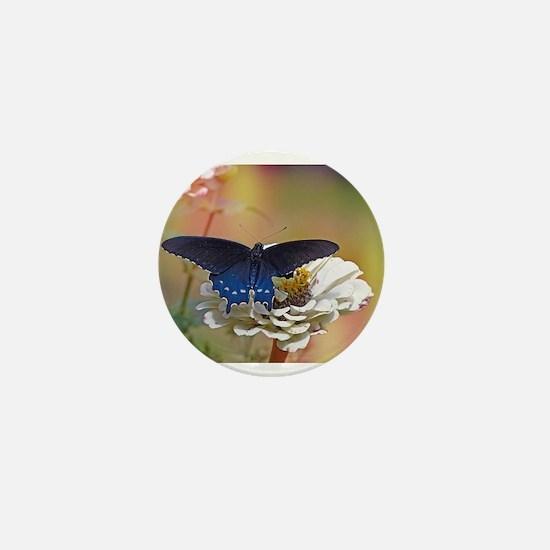 Spicebush Swallowtail Mini Button
