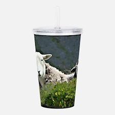 Herdwick Ewe & Lamb Acrylic Double-wall Tumbler
