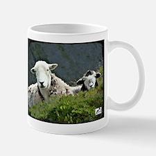 Herdwick Ewe & Lamb Mugs
