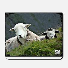 Herdwick Ewe & Lamb Mousepad