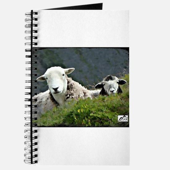 Herdwick Ewe & Lamb Journal