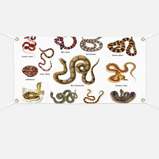 snakes Banner