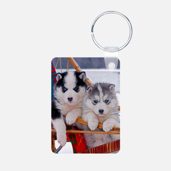 Husky Puppies in sled Keychains