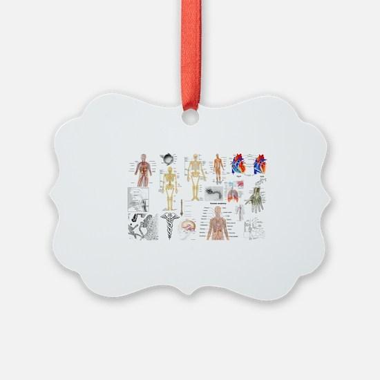 Human Anatomy Charts Ornament