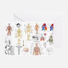 Human Anatomy Charts Greeting Cards