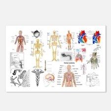 Human Anatomy Charts Postcards (Package of 8)