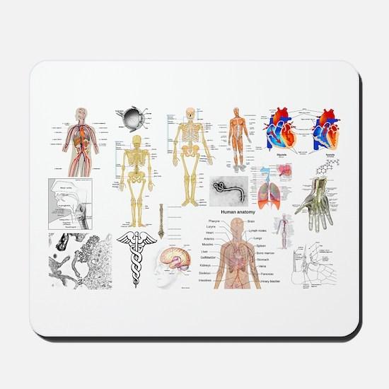 Human Anatomy Charts Mousepad