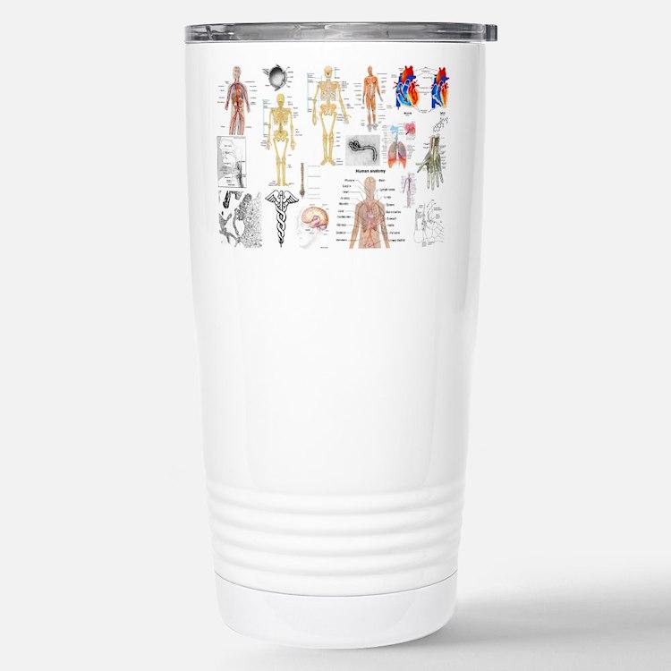 Human Anatomy Charts Travel Mug