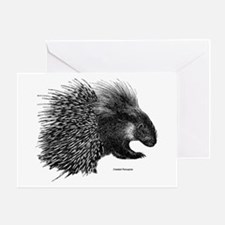 Crested Porcupine Greeting Cards
