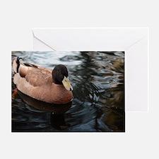 Cute Lucky ducks Greeting Card