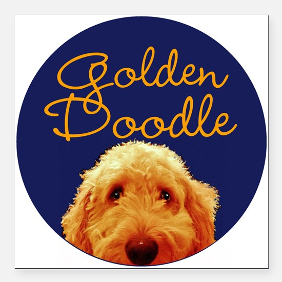 "Golden Doodle Square Car Magnet 3"" x 3"""