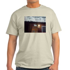 Cat on a cold tin roof T-Shirt