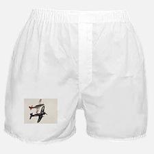 Airshow Warbirds Boxer Shorts